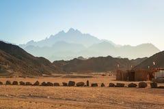 Paisaje del desierto africano Imagen de archivo libre de regalías