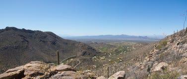 Paisaje del desierto con el cielo azul y el cactus imagenes de archivo