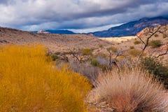 Paisaje del desierto con las nubes lluviosas en Nevada Fotografía de archivo libre de regalías