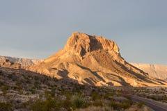 Paisaje del desierto de la madrugada en la curva grande fotos de archivo