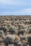 Paisaje del desierto de New México Imagen de archivo libre de regalías