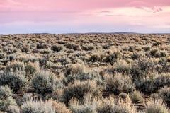 Paisaje del desierto de New México Imagenes de archivo