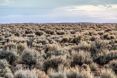 Paisaje del desierto de New México Fotografía de archivo