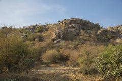 Paisaje del desierto en Bera, la India fotos de archivo