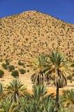 Paisaje del desierto en las montañas de Antiatlas Fotografía de archivo libre de regalías