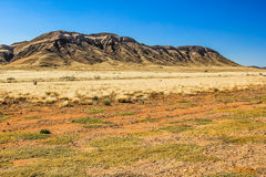 Paisaje del desierto en Namibia Foto de archivo