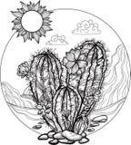 Paisaje del desierto en un círculo Cactus floreciente dibujado mano