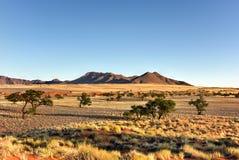 Paisaje del desierto - NamibRand, Namibia Foto de archivo