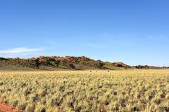 Paisaje del desierto - NamibRand, Namibia Imagenes de archivo
