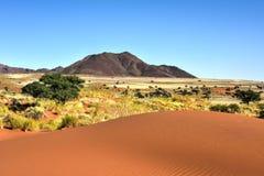 Paisaje del desierto - NamibRand, Namibia Foto de archivo libre de regalías