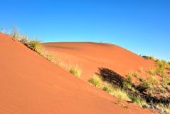 Paisaje del desierto - NamibRand, Namibia Imagen de archivo
