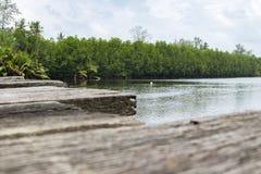 Paisaje del embarcadero de madera del abandono que cruza el río Sol brillante Foto de archivo libre de regalías