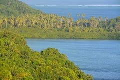 Paisaje del Fijian Foto de archivo libre de regalías