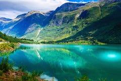 Paisaje del fiordo y del glaciar de Noruega imágenes de archivo libres de regalías