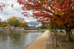 Paisaje del follaje colorido en la orilla del lago en otoño Foto de archivo