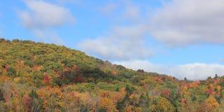 Paisaje del follaje de otoño imagen de archivo libre de regalías