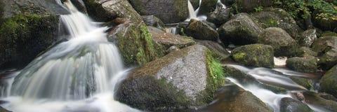 Paisaje del formato del panorama de la cascada en bosque Imágenes de archivo libres de regalías