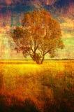 Paisaje del grunge del arte que muestra el árbol solo en prado en verano Foto de archivo