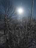 Paisaje del hielo del invierno Fotos de archivo libres de regalías