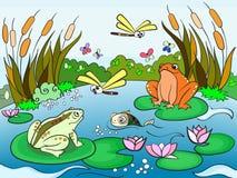 Paisaje del humedal con el vector de los animales para los adultos Imagen de archivo