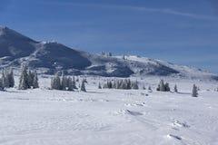 Paisaje del invierno del área de Platoto de la meseta en la montaña de Vitosha, Sofia City Region, Bulgaria foto de archivo