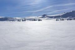 Paisaje del invierno del área de Platoto de la meseta en la montaña de Vitosha, Sofia City Region, Bulgaria fotografía de archivo libre de regalías