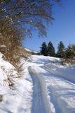 Paisaje del invierno Foto de archivo libre de regalías