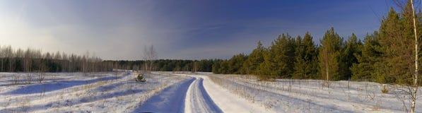 Paisaje del invierno foto de archivo