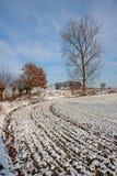 Paisaje del invierno - 05 Fotos de archivo libres de regalías