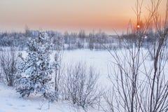 Paisaje del invierno. Imagen de archivo libre de regalías