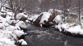 Paisaje del invierno almacen de metraje de vídeo