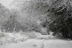 Paisaje del invierno imagen de archivo