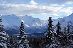 Paisaje del invierno Imagen de archivo libre de regalías