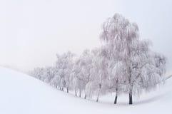 Paisaje del invierno Fotos de archivo libres de regalías