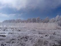 Paisaje del invierno Imagenes de archivo