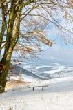 Paisaje del invierno, banco debajo de la nieve, árboles con las hojas amarillas Imagenes de archivo