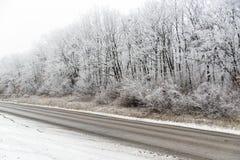 Paisaje del invierno, bosque cerca del camino Fotos de archivo