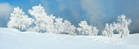 Paisaje del invierno del bosque de Frost con el cielo azul Fotografía de archivo libre de regalías