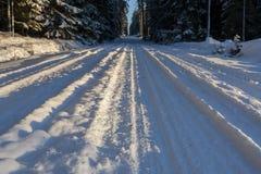 Paisaje del invierno, bosque hermoso en un invierno Foto de archivo