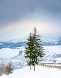 Paisaje del invierno, camino nevado en las montañas con los árboles Imagen de archivo libre de regalías