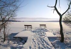 Paisaje del invierno con dos bancos Imagen de archivo libre de regalías