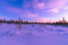 Paisaje del invierno con el bosque, el cielo nublado y el sol Fotos de archivo libres de regalías
