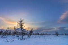 Paisaje del invierno con el bosque, el cielo nublado y el sol Fotos de archivo