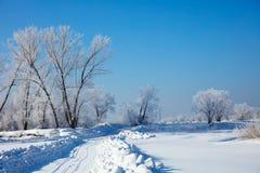 Paisaje del invierno con el camino Escarcha y frío Fotografía de archivo