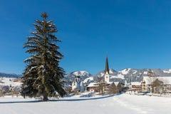 Paisaje del invierno con el pueblo fotografía de archivo libre de regalías