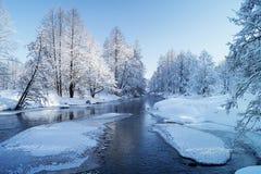 Paisaje del invierno con el río en madera Fotografía de archivo libre de regalías