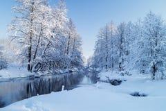 Paisaje del invierno con el río en madera Imagen de archivo