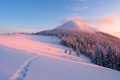 Paisaje del invierno con el sendero en la nieve en las montañas Fotos de archivo libres de regalías