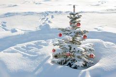 Paisaje del invierno con la decoración del árbol de abeto de la Navidad y del Año Nuevo Foto de archivo