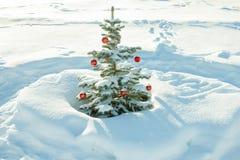 Paisaje del invierno con la decoración del árbol de abeto de la Navidad y del Año Nuevo Imagen de archivo libre de regalías